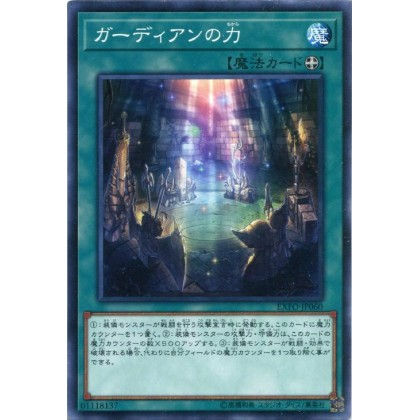 EXFO-JP060 Power of the Guardians ガーディアンの力