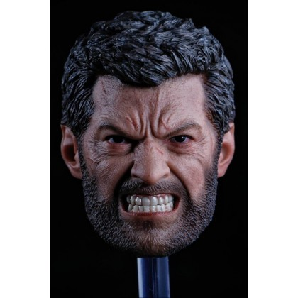 1/6 Logan headsculpt Angry Version